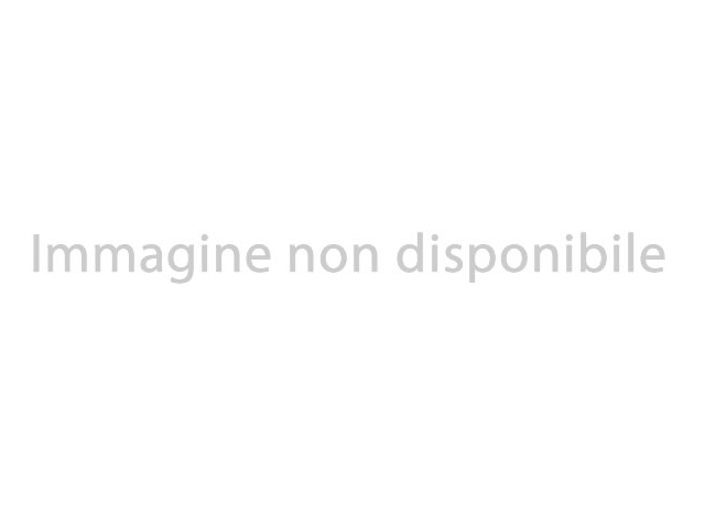 VOLKSWAGEN Tiguan 2.0 TDI SCR 4MOTION Executive BMT